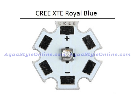 xte-royal-blue.jpg
